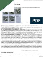 Técnicas de conducción encurva _ Motoreteando.pdf