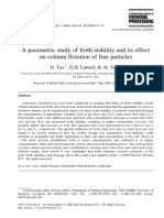 A Parametric Study of Froth Stability and Its Effect