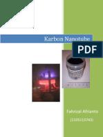Karbon Nanotube