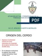 situación actual y perspectivas de porcicultura en Mexico 2014.pptx