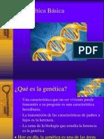 Clase Genetica Basica (2)