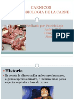 Bases Microbiologicas