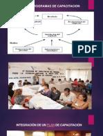 Tema III Programas de Capacitacion