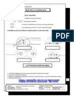 Mitosis-ciclo Celular 2º