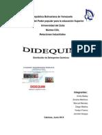Manual de Organizacion Completo