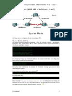 Resumen BSCI 17 - Multicast 2