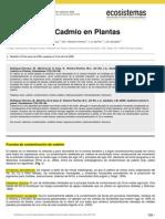 Efectos Del Cadmio en Plantas