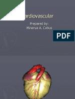 Cardiovascular 1