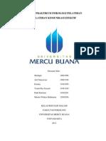 Fix Praktikum Pelatihan Tugas Kelompok Okt2013