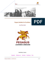 An Overview - Pegasus Institute