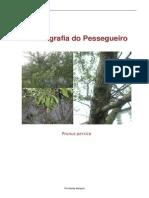 13364652 Biologia Do Pessegueiro