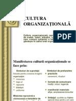 12 Cultura Organizaţională