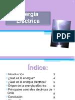 E.electrica
