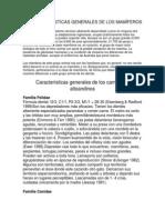 Características Generales de Los Mamíferos