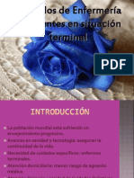 terminales-101021154234-phpapp01.pptx
