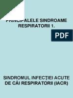 Curs 6 Principalele Sindroame Respiratorii 2