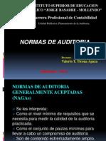 02 Normas de Auditoria