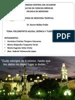 PIELONEFRITIS AGUDA, CRÓNICA Y TUBERCULOSIS RENAL