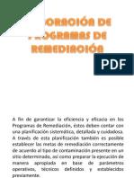 Elaboración de Programas de Remediación