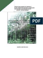 Correcciones Proyecto Balso 5to b 12-Mayo-2014 (2)