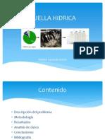 HUELLA HIDRICA Andrea Lavanda Torres