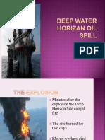 2006 Deep Water Horizon Oil Spill