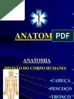158935436 Constituicao Do Corpo Humano Ppt