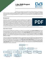 DVB Project Factsheet