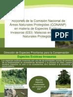 Acciones de La Comisión Nacional de ANP en Materia de EEI