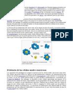 Celulas Cancerigenas.doc