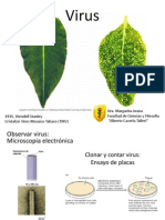 Virus BioI 2014 I