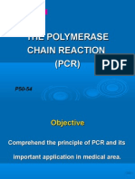 Exp4-3  PCR