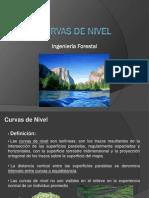 Capitulo_4_Curvas de Nivel