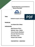 Unidad de Negocio Proyect