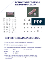 Ch 2014 07 Factores Cromos Infertil Mascul