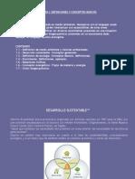 Presentación Gestión Ambiental Ing IIsem2013
