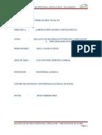 Informe Nº2 Practicas Prof