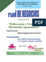 Mermelada de Aguaymanto-plan de Negocio Para Enviar (1) (1)