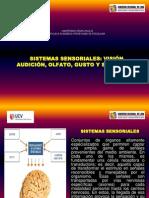 09. Sistemas Sensoriales (Visión, Audición, Olfato, Gusto y Tacto). Sesion Nro 09 (1) (1) (1)