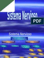 El Sistema Nervioso Real