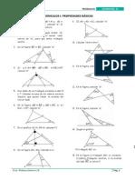 GE2014_S5 Triángulos