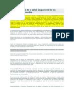 Marco Referencia de La Salud Ocupacional de Las Empresas en Colombia