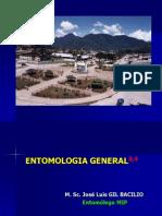 Entomología General 3 Evolución de Los Insectos