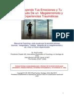 Reconstruyendo Tus Emociones y Tu Vida Después de Un Megaterremoto y Otras Experiencias Traumáticas