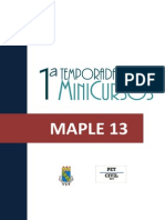MAPLE( IVO).pdf