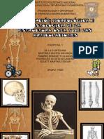 A. Anatomia e Histologia Del Tejido Oseo y Articular