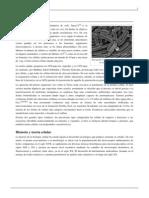 Célula.pdf
