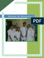 informe de laboratorio i