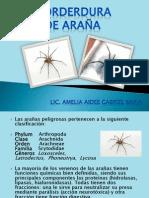 Morderua de Araña