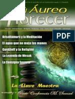 revista_31